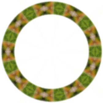 緑色のリング模様