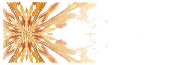 オレンジ色の花模様.jpg