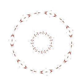 二重の輪模様