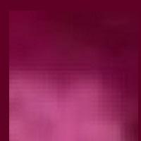 濃いピンク色の模様.JPG